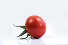 röd tomatwhite för bakgrund Arkivfoton