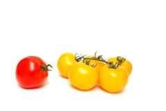 röd tomatyellow Royaltyfri Fotografi