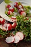 Röd trädgårds- rädisa och arugula Fotografering för Bildbyråer