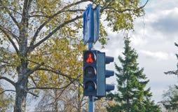 Röd trafikljus på gatan av en europeisk stad ingen övergång royaltyfri foto