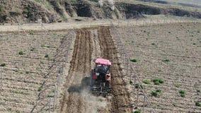 Röd traktor att odla jord i vingårdmorgonen på en solig dag arkivfilmer