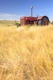 Röd traktor i äng Arkivfoton