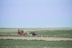 Röd traktor i ett vårfält Royaltyfri Bild