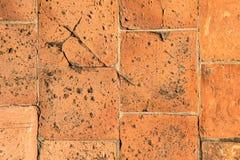 Röd trottoar för lerategelstenjord Royaltyfri Foto