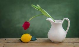 Röd tulpan och citron Fotografering för Bildbyråer