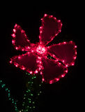 Röd tusensköna formad garnering för julljus Arkivfoton
