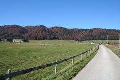 röd väg för kullar till Royaltyfri Fotografi