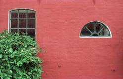 Röd vägg för tegelsten och gröna fönster Royaltyfri Fotografi
