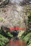 Röd välvd bro över ström i botaniska trädgårdar Royaltyfri Foto