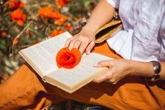 Röd vallmo på öppna boksidor Kvinnahols en fred blomma på den öppna boken, medan läsa royaltyfri foto