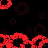 Röd vallmo på den svarta bakgrunden Arkivfoto