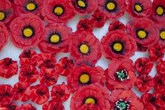 Röd vallmo Symbol av segern Royaltyfri Bild