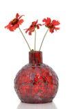 röd vase Arkivfoto