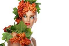 Röd viburnum Fotografering för Bildbyråer