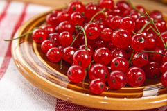 röd vinbär i en plätera på en bordlägga Royaltyfri Foto