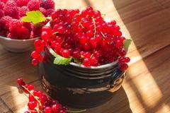 Röd vinbär och hallon Arkivbilder