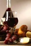 röd vine royaltyfri fotografi