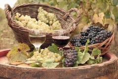 röd vit wine arkivfoton