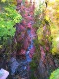 Röd Waterton nationalpark - vagga kanjonen fotografering för bildbyråer