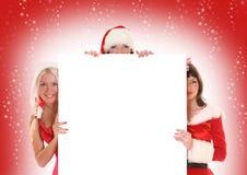röd white arkivbild