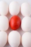röd white för ägg Royaltyfri Bild