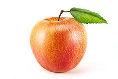 röd white för äpplebakgrund Arkivbild