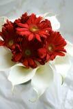 röd white för bukett Royaltyfria Foton