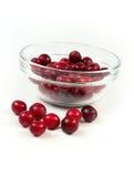 röd white för cranberry arkivbild