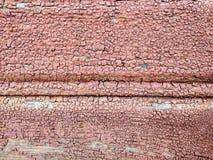 Röd Wood textur Arkivbild