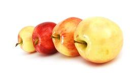 röd yellow för äpplen Royaltyfria Foton