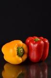 röd yellow för spansk peppar Royaltyfri Foto