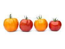 röd yellow för tomater två arkivfoto