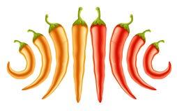 röd yellow för varma peppar stock illustrationer