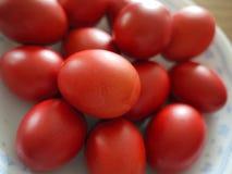 röda ägg Arkivbild