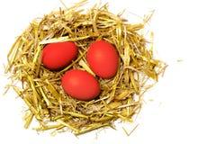Röda ägg i ett easter rede av sugrör som isoleras på vit bakgrund Royaltyfri Fotografi