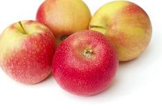 Röda äpplen Arkivfoto