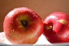2 röda äpplen Royaltyfria Bilder