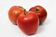 röda äpplen Royaltyfria Foton