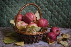 Röda äpplen för stilleben i en korg royaltyfri illustrationer