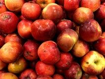 röda äpplen frukter Fruktabdgrönsaker royaltyfri bild