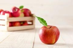Röda äpplen i en ljus träask Royaltyfria Foton