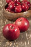 Röda äpplen i en timmerbunke Arkivbild