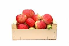 Röda äpplen i en träask Royaltyfri Foto