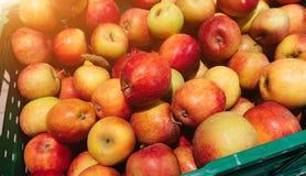 Röda äpplen i plast- spjällådor, klart till salu i marknaden royaltyfria bilder