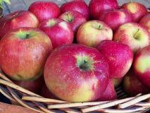 Röda äpplen i träkorg Arkivbild