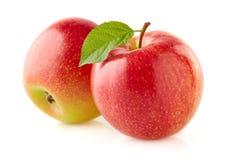 Röda äpplen med bladet Arkivfoto