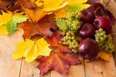 Röda äpplen med gröna druvor royaltyfri fotografi