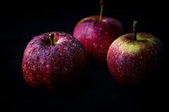 Röda äpplen med waterdrops på dem Arkivbilder