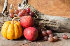 Röda äpplen och druvor och pumpa Arkivbild