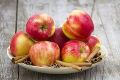 Röda äpplen och kanelpinnar Fotografering för Bildbyråer